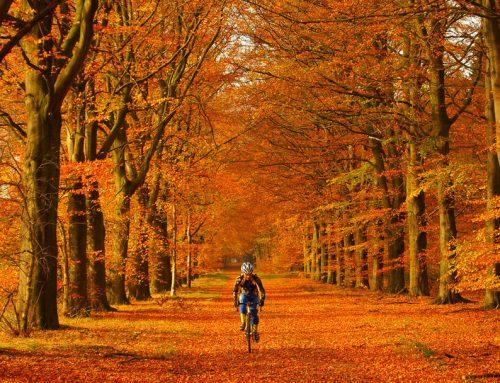Őszi kerékpárosruházat